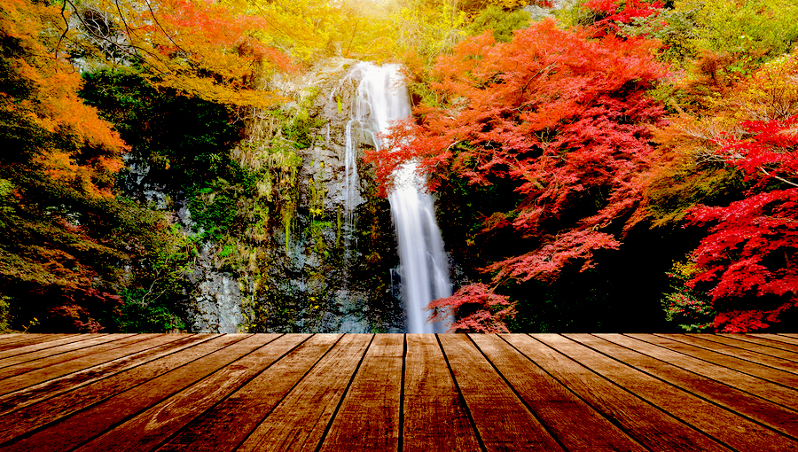 Autumnal Equinox Day in Japan