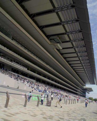 Tokyo Racecourse Stands from below