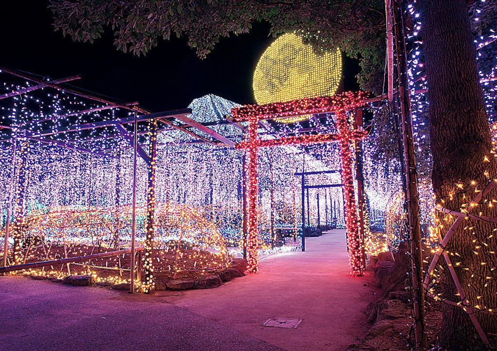 Shimane Prefecture: Autumn and Winter Illumination, Matsue - Ultimate Guide To Winter Illuminations In Japan's 47 Prefectures