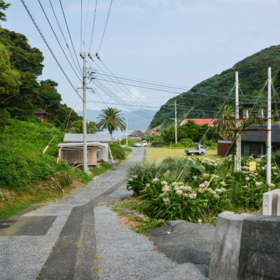 Cat Island Fukashima street