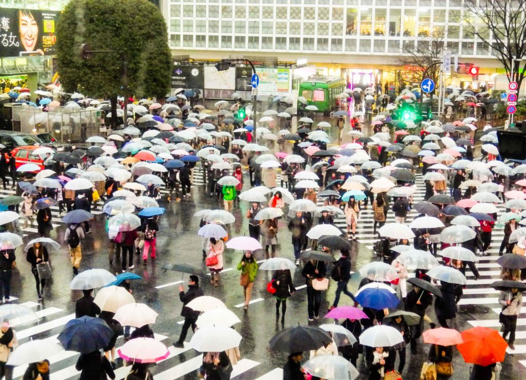 6 Spots to Get a Bird's Eye View of the Shibuya Scramble