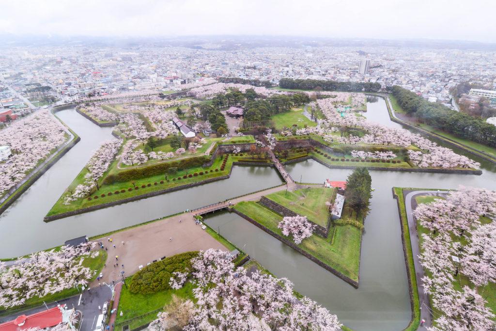 Cherry blossom in Goryokaku Hakodate Hokkaido Japan