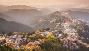 Cherry blossoms among the Yoshino mountains in Nara prefecture