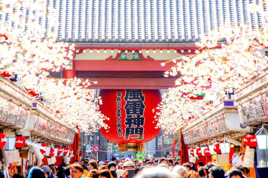 Sensoji Temple Sakura Tokyo