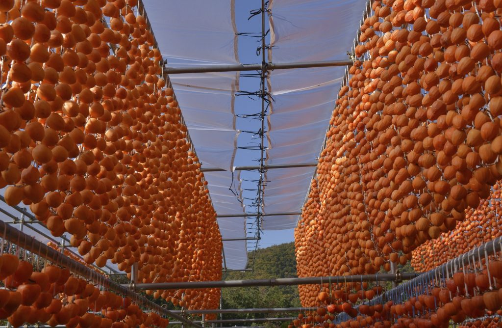 Get your fill of fruit in Yamanashi prefecture.