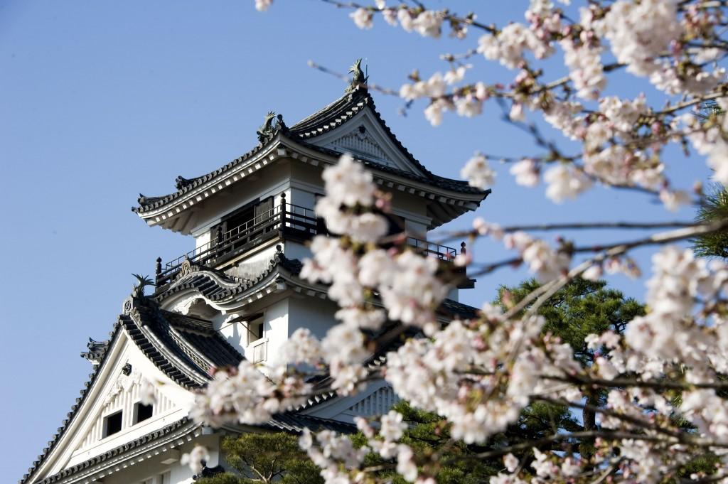 Visit one of Japan's last surviving original castles.