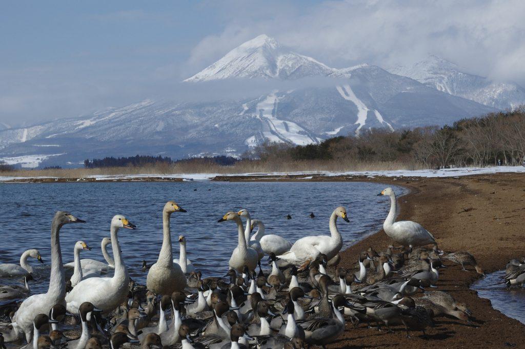 Mount Bandai Fukushima