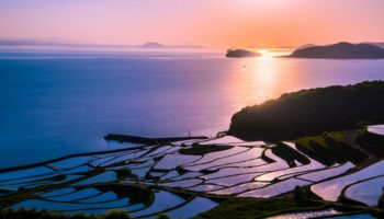 Saga Prefecture Rice fields in Japan