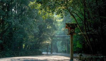 The Naiku of the Ise Jingu enshrines the sun goddess Amaterasu, the mother of the Japan.