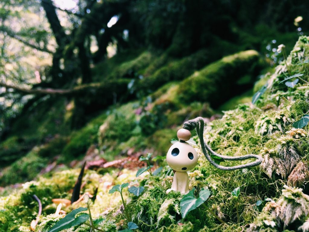 Kodama (tree spirits) from Princess Mononoke left behind by hikers.