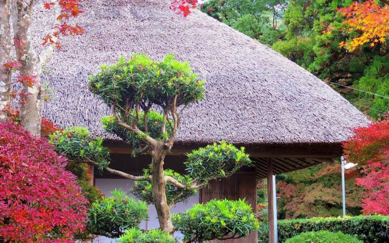 Kunenan mansion in Saga, Japan is an exclusive spot for Autumn leaves viewing in November