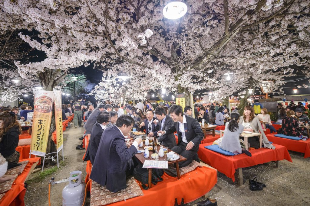 Top 10 cultural experiences in Japan: Have a hanami