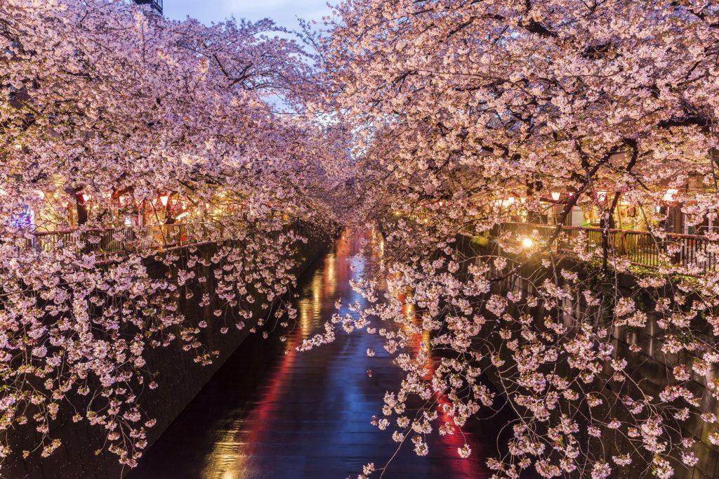 Nakameguro - GaijinPot Travel