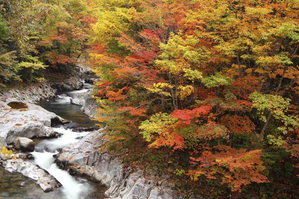 Best spots to see autumn leaves in Tohoku Mt. Bandai Fukushima