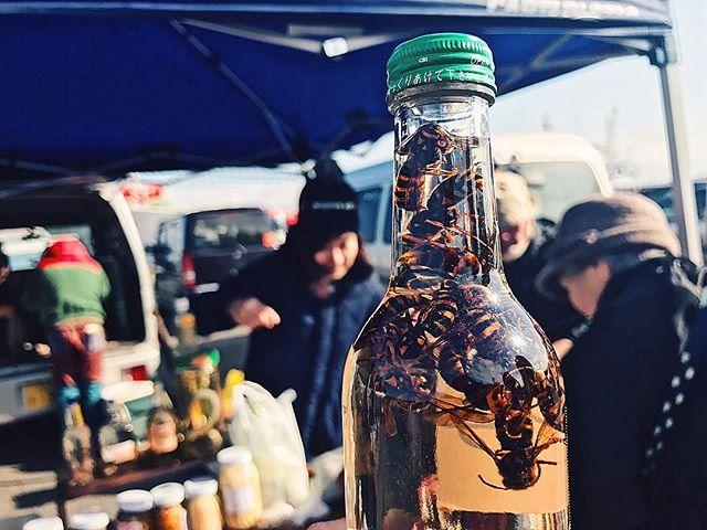 Tatehana wharf market, hachinohe, aomori