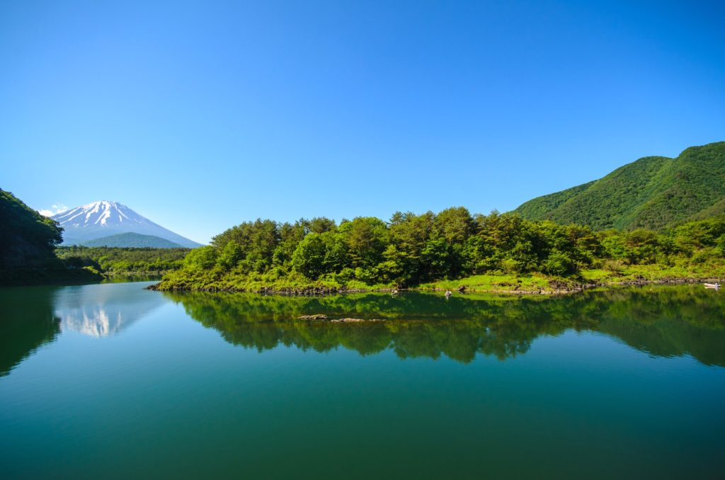 Lake Shoji and Mt. Fuji
