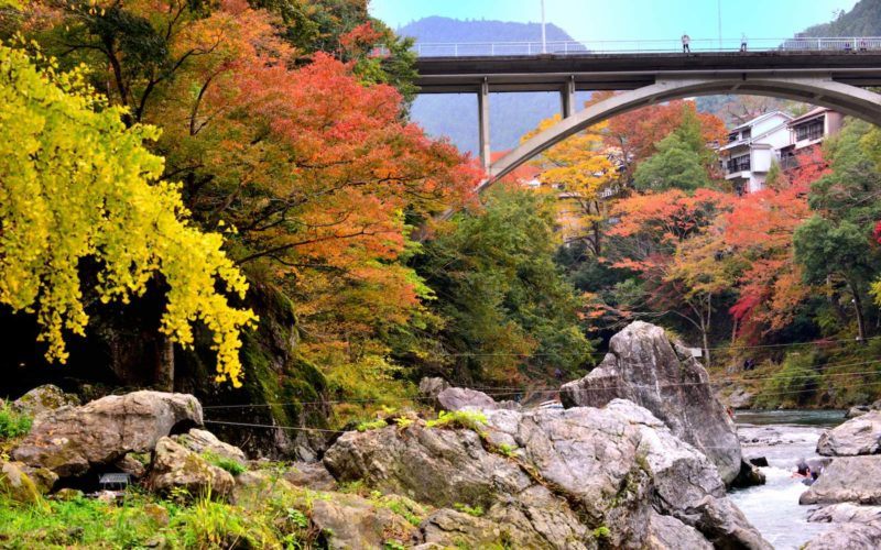 Located in western Tokyo, Okutama is a part of Chichibu-Tama-Kai National Park.