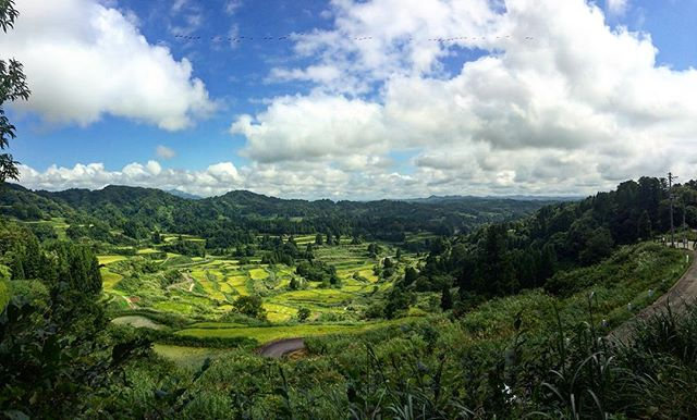 Hoshige Rice Terrace of Niigata