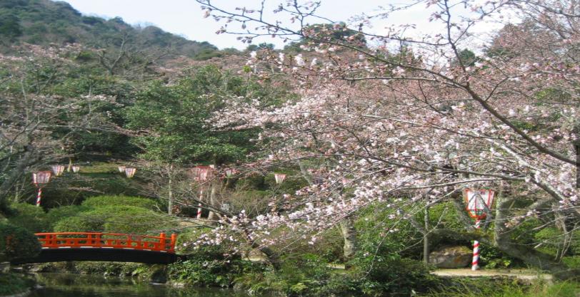 Utsubuki Park in Kurayoshi, Tottori.