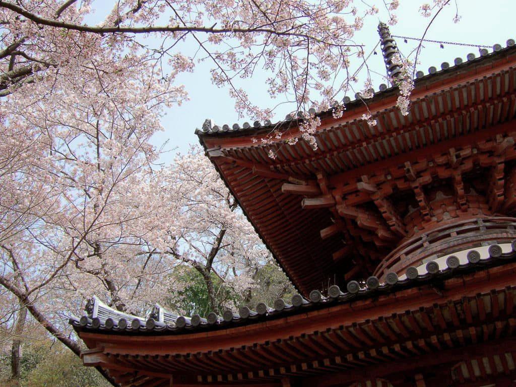 Kimiidera Temple Wakayama