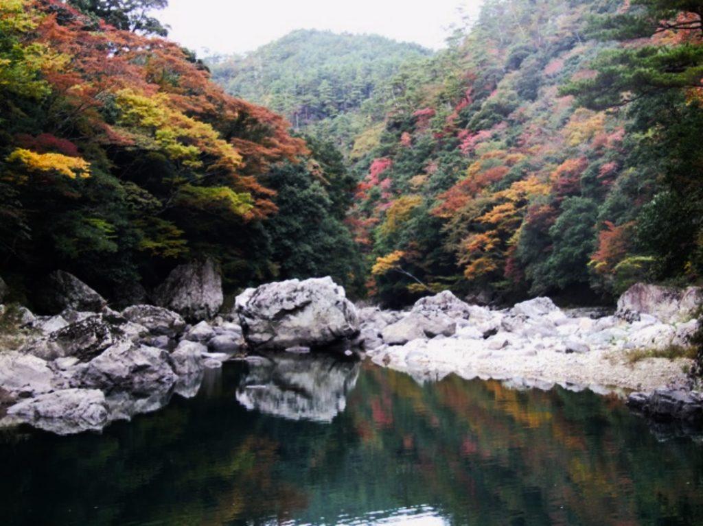 Best spots for autumn leaves in Chugoku Chomonkyo Gorge Autumn Yamaguchi