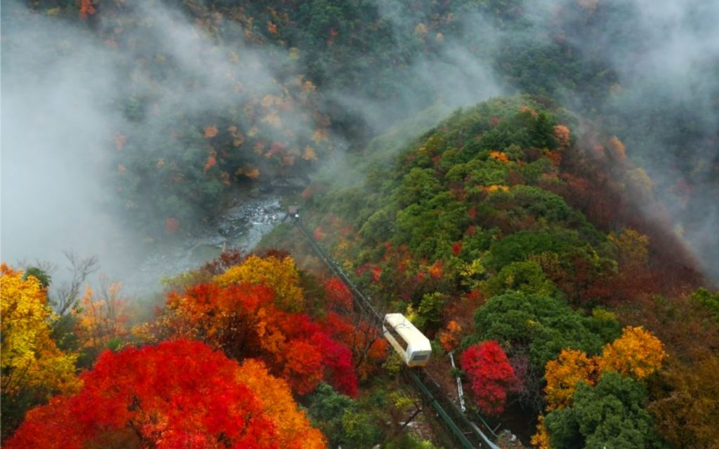Best spots for autumn leaves in Shikoku Hotel Iya Onsen