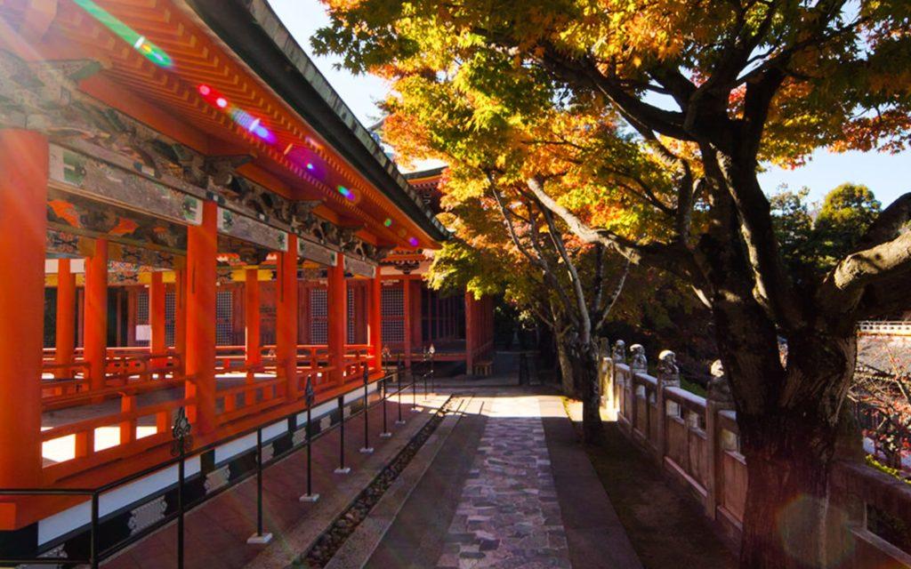 Best spots to see Koyo in Chugoku Kosanji Temple Visit Hiroshima
