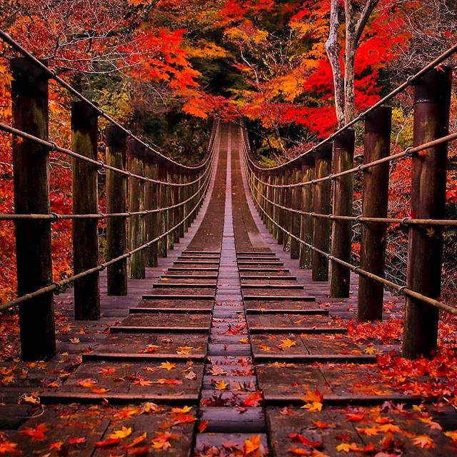 Hananuki Valley Autumn leaves in Ibaraki Japan