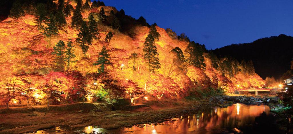 Korankei Night time Autumn Leaves in Aichi Japan