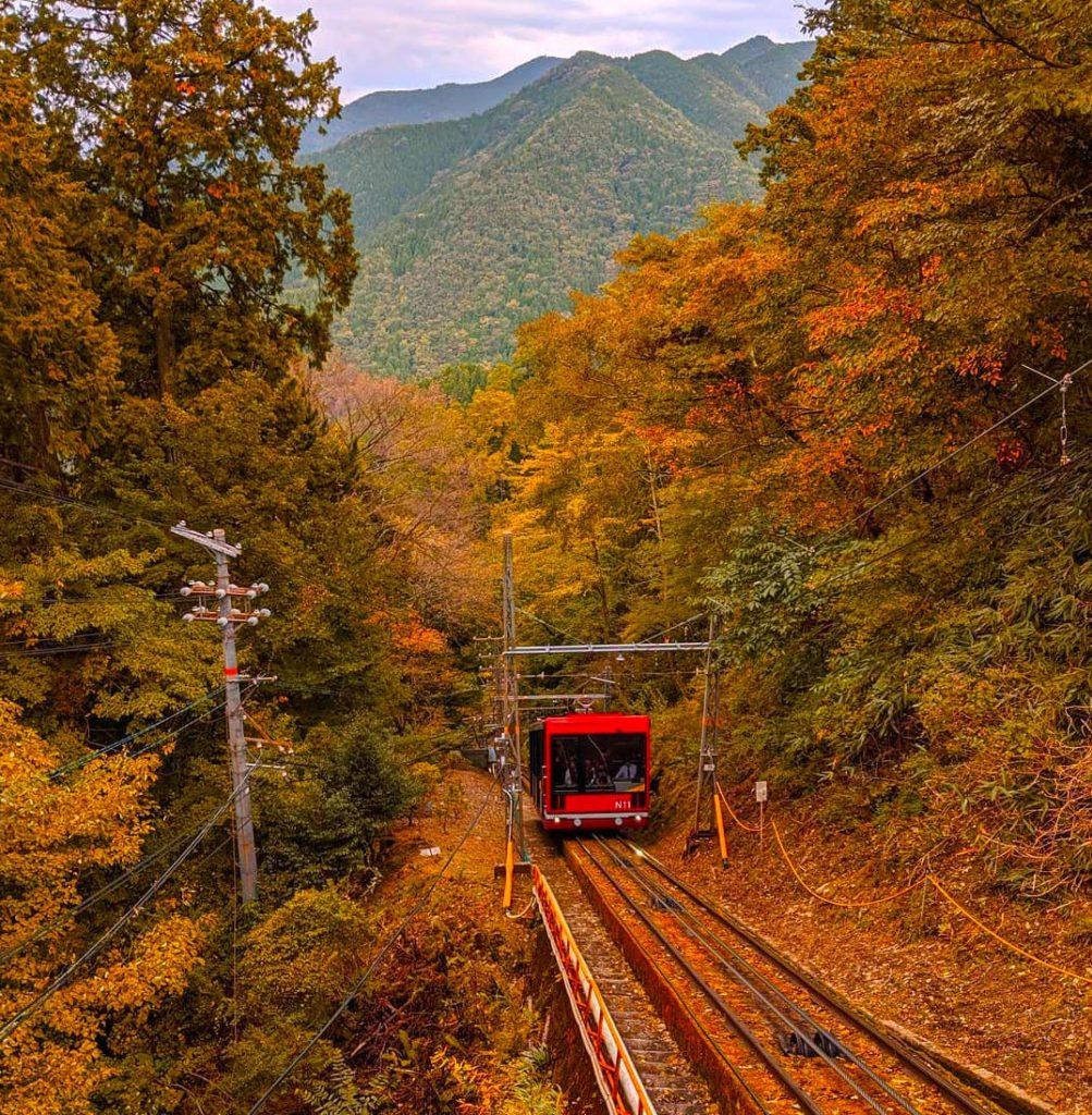 Autumn leaves at Mount Koya in Wakayama Japan