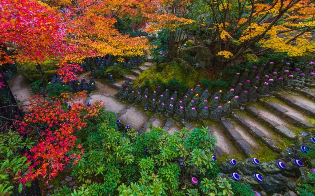 Miyajima Hiroshima Prefecture Best spots to see autumn leaves in Chugoku