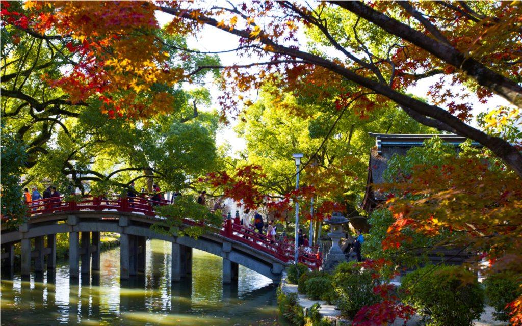 Spots to see autumn leaves in Kyushu Dazaifu Temple Fukuoka