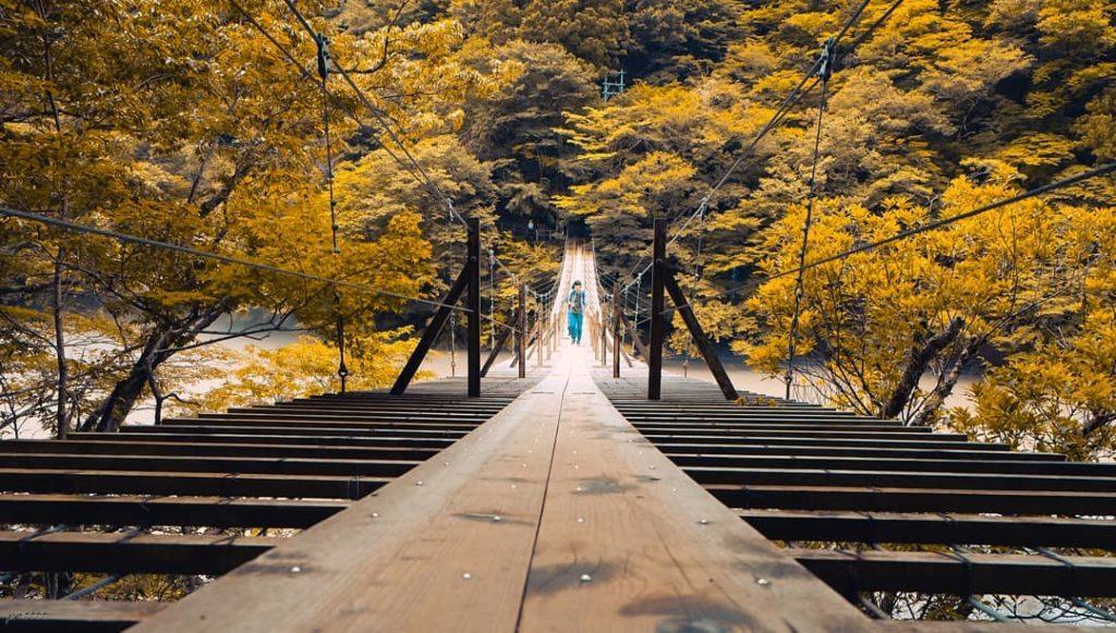 Sumatakyo Suspension Bridge Autumn Leaves