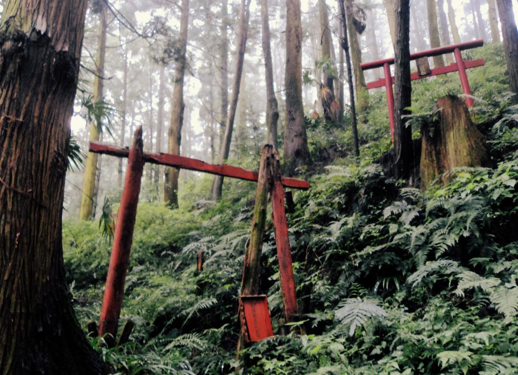 Kohechi Trail Kumano Kodo Torii