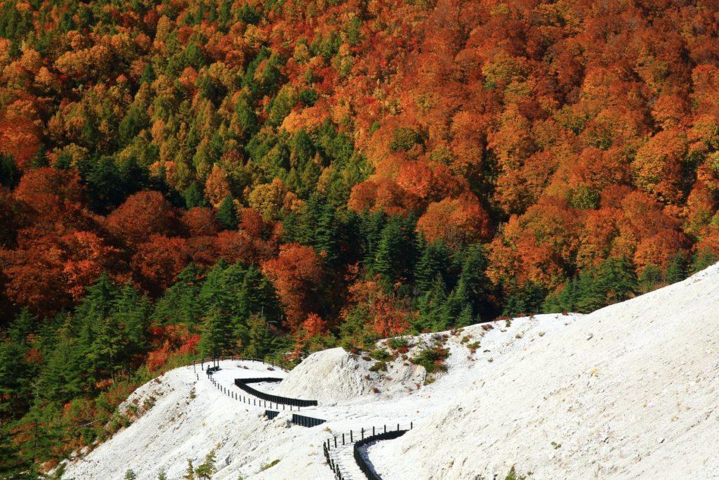 Autumn in Akita near Yuzawa City, Japan.