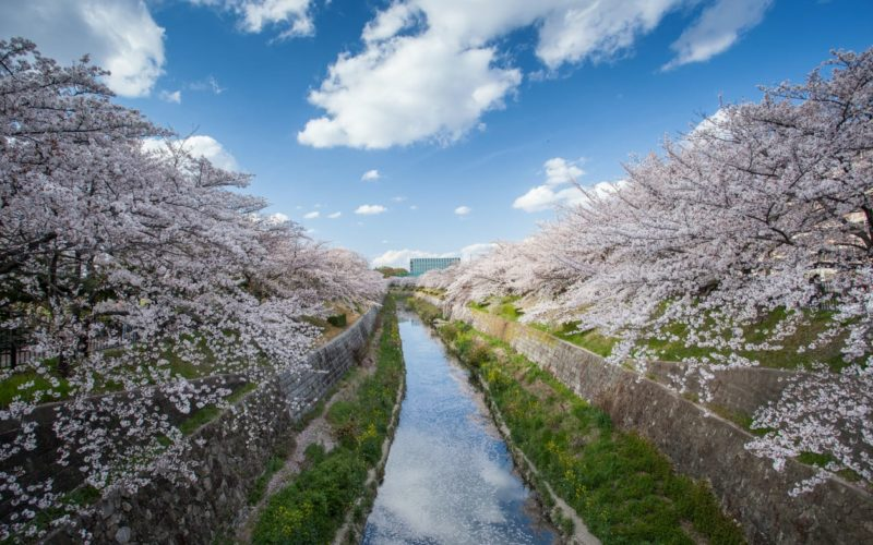 The Yamazaki River in Nagoya, Japan.