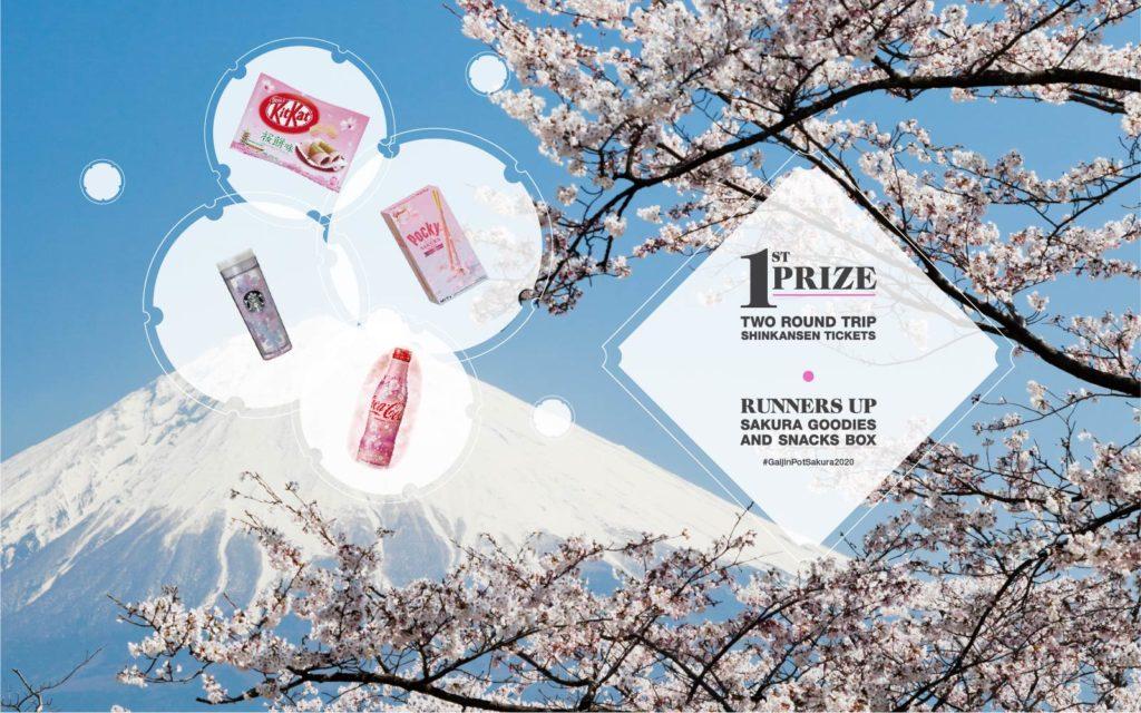 GaijinPot 2020 Sakura in Japan Contest