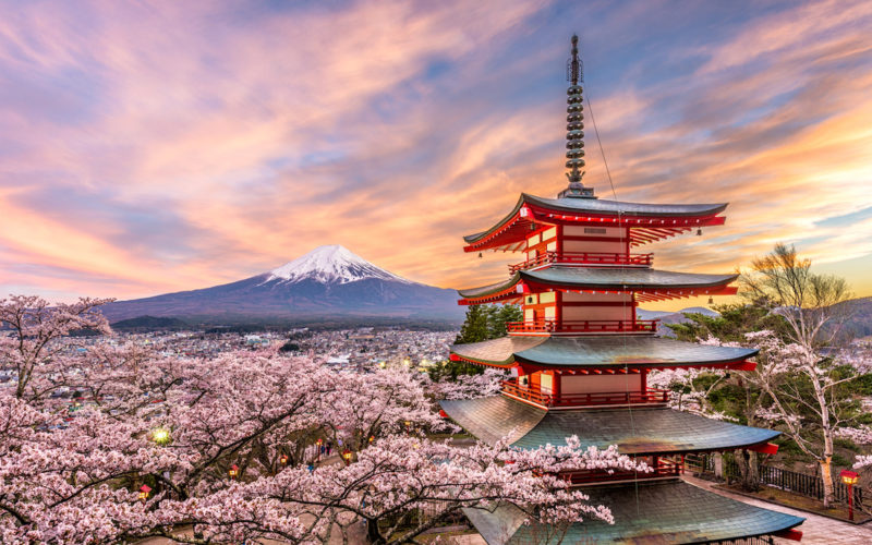 Chureito Pagoda with mount fuji and Cherry blossoms in Spring in Japan