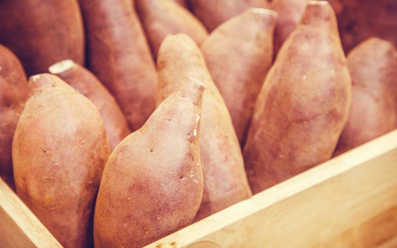 Naruto Kintoki Sweet Potato Tokushima